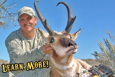 Montana Private Land Archery Antelope Hunts