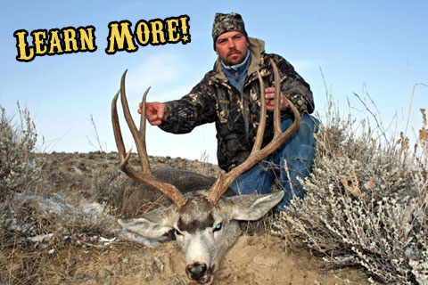 Montana Private Land Archery Mule Deer Hunts