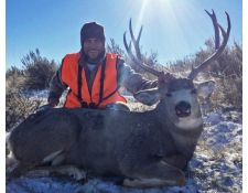 2018-Billy's Super Montana Mulie