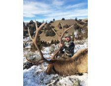 2018-Another Great Montana Bull for Justin